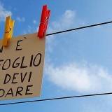 non_e_il_foglio_che_devi_guardare